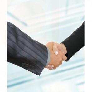 Corporate Structure Agreements