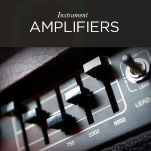 Instrument Amplifiers - Rolan Laney Fishman