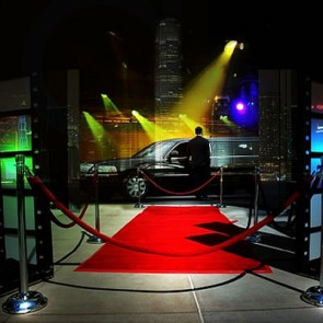 Sports / Concerts Limo Service
