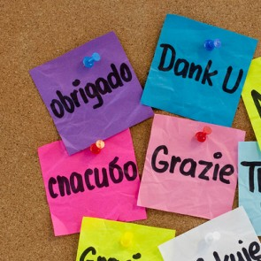 Custom Designed Brazilian Portuguese Language Workshops