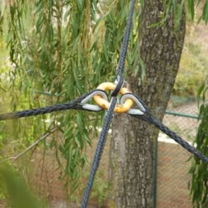 Tree  Cobra Cabling Systems