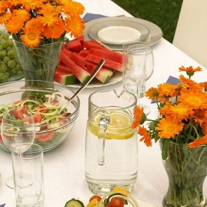 In-home Dinner Parties Catering