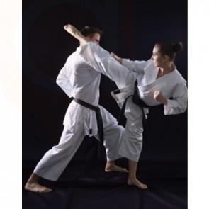 Shaolin Kempo Karate Classes