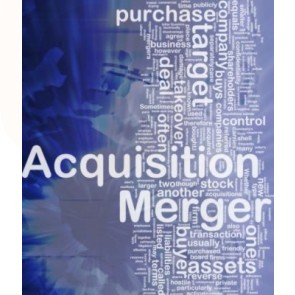Mergers & Acquisitions: Culture Difference Assessments & Improvement Solutions