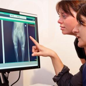 Pet Digital Radiography