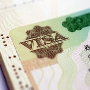 Visa and Immigration Consulting