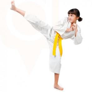 Tiny Tigers - Taekwondo Martial Arts