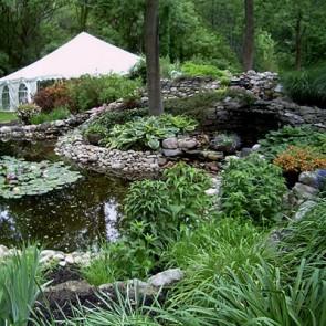 Garden Waterscaping