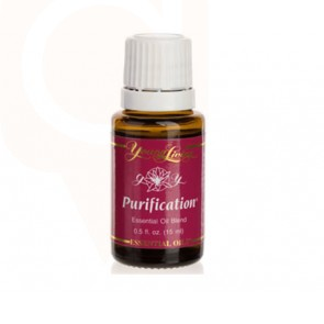 Purification Essential Oil - 15 ml